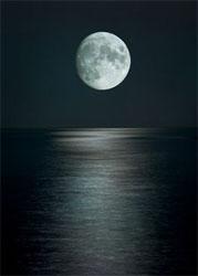 black dark night with moon in the sky
