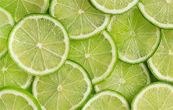 green lime citrus